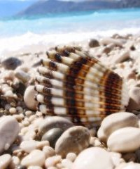 Családi nyaralás a tengerparton