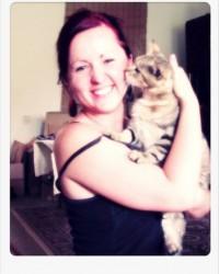 Macskatartás lakásban – doromboló társ a mindennapokban