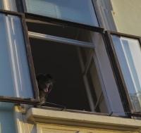 Árnyékolók tetőtéri ablakokra