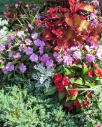 Virágoskert ötletek